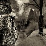 Soti Triantafyllou: Contes de désespoir